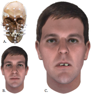 fhid snapshot facial reconstruction
